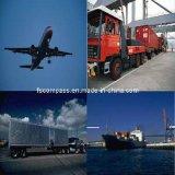 Spedizioniere di trasporto professionale e certo in Cina