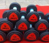 BerufsgummiDumbbell mit dem Colorfull Firmenzeichen verwendet in der Gymnastik