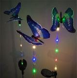 고품질 태양 나비 빛