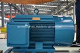 мотор 12-Pole 500r/Min Pm