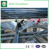 La agricultura comercial de policarbonato con efecto invernadero hidropónico sistema