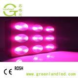 Ce spectre de puissance élevée RoHS plein COB LED haute puissance grandir la lumière