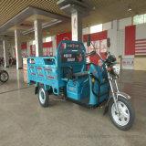 Auto che equilibra il motorino elettrico del motociclo delle tre rotelle con ccc