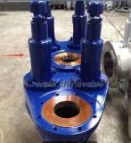 두 배 운반 가득 차있는 상승 압력 안전 안전 밸브 (A357Y)