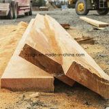 Der Holz-Protokoll-Schnitt sah Maschinen-bewegliche Bandsäge-Sägemühle