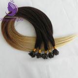 Extensão do cabelo da ponta da queratina U da cor de Ombre do tom #2/4/16 três