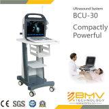 (Tierarzt BCU-30) 15 Zoll-beweglicher Farben-Doppler-Ultraschall für Tierarzt