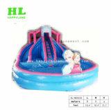 성인과 아이를 위한 수영장을%s 가진 팽창식 물 미끄럼