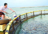 Cage de flottement de poissons de cage de pêche en mer profonde pour la mer Aquaculature