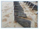 Perlen-Austeren-Wachstum-Korb-Rahmen-Ineinander greifen für Aquakultur in den USA-Märkten