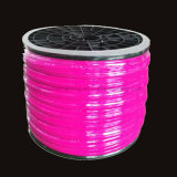 Chaqueta de color Neón LED DE 24V 12V LED DE TIRA FLEXIBLE DE LUZ