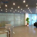 Het unieke Netwerk van het Metaal van de Decoratie van het Ontwerp voor Plafonds