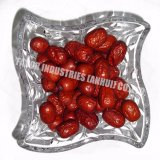 Certificat Halal Snack chinois de fruits séchés Dates rouge