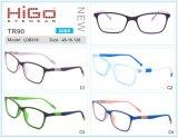 Optische Frames van de Jonge geitjes van de Glazen van de Kinderen van de Fabriek van de Frames van Wenzhou de Optische Tr90 Tr90