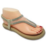 Signora casuale Sandals Women Shoes Form Cina Guangdong di modo