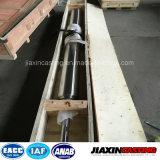 De hittebestendige die Rol van de Oven in Staalfabriek wordt gebruikt (Provincie Jiangsu)