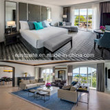 Hotel moderno mobiliário Furntiure Business Suite Quarto Sala Escura