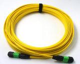 Cordon de connexion à plusieurs modes de fonctionnement du faisceau inférieur Om3 Om4 MPO de la perte par insertion 8/12/24