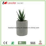 Decoração Succulent artificial nova do potenciômetro do cimento das plantas