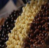 [هيغقوليتي] [هتل-ت500-1250ا] شوكولاطة طلية يصقل حوض طبيعيّ آلة