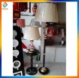 Lámpara de suelo moderna de interior de la alta calidad LED para la sala de estar