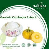 Выдержка Cambogia Garcinia сырья 100% чисто