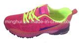 중국 Hebei 사람들 싼 도매 스포츠 단화를 위한 최신 판매 2017 신식 공기 스포츠 Shes