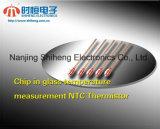 Tempmeasurement Chip in Glass Ntc Thermistor