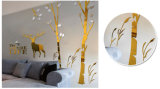 3D Beeld van het Beeld van de Muur van de Decoratie van het huis het Acryl
