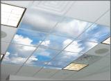 Painéis Decorativos de Design Bom Cor Changing LED Skylights Painel LED de Teto