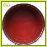 HACCP&Halal machte Tomatenkonzentrat-Qualitäts-preiswerten Preis ein