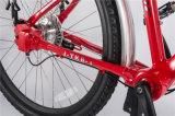 Tdjdc 상한 긴 여행 Bicycle/No 사슬 자전거 도매