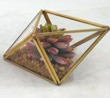 Succulent moderno conservato in vaso della decorazione del blocco per grafici artificiale del metallo