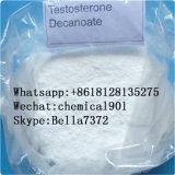 99% hoher Reinheitsgrad-Testosteron Decanoate Hormon-Steroid-Puder
