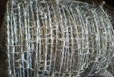 Горяч-Окунутая гальванизированная колючая проволока бритвы для загородки