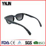 Óculos de sol retros da dobradiça do teste padrão de estrela da sarja de Nimes da boa qualidade para homens
