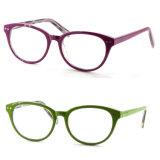 대중적인 주입 프레임 Eyewear 안경알 광학 프레임
