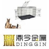 개를 위한 쉽고 빠른 구조 집