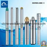 6 polegadas/8 polegadas/10 polegadas de profundidade de aço inoxidável da bomba eléctrica de água submersível