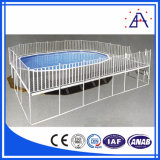 ISO9001 Leverancier van de Omheining van de Pool van het Aluminium van China de Goedkope