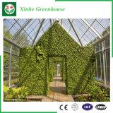 يزرع/حديقة [مولتي-سبن] دفيئة زجاجيّة لأنّ ثمرة/زهرة