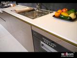 Module de cuisine de laque de qualité de modèle neuf de Welbom avec la fin de doux