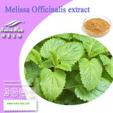 Nutramax - Melissa Officinalis Extract Powder (acide de romarin de 3%~5%)