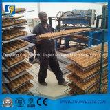 tabuleiro de ovos de papel com certificação global caixa de papelão máquina de formação para tornar a máquina de árvore da Sapata