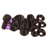 처리되지 않은 Virgin 인도 머리 바디 파 3PCS 인도 Virgin 머리 사람의 모발 연장은 처리되지 않는 Remy 머리 직물 뭉치를 도매한다