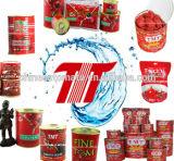 缶詰にされたトマトのり、磨き粉のトマトのり、ケチャップ
