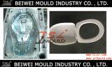 Molde plástico de calidad superior de la cubierta de asiento de tocador de la inyección