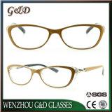 Neue Form-Art-Entwurf PC Anzeige Eyewear Gläser