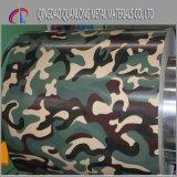 A cor Prepainted revestiu a bobina de aço com o teste padrão camuflar