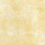 mattonelle di pavimento di ceramica di 80X80cm Rusitc (8106)
